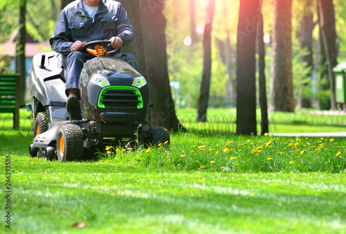 Montage in der Fensternische Lime grun Green grass treeming with lawn mower