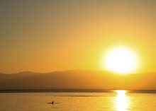Tourist Floating On The Dead Sea During Bright Sunrise