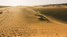 Three People In Desert