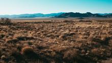 Desolate Arizona Desert Landscape