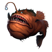 Angler Fish On White Background Realistic Illustration Isolate. Scary Deep-sea Fish Predator.