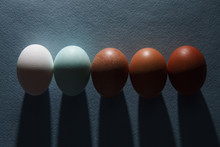Different Colored Eggs Palette