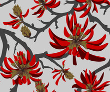 Red Flowers On Gray Background...
