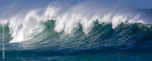 Stickers pour porte Beautiful Ocean wave panorama in Hawaii