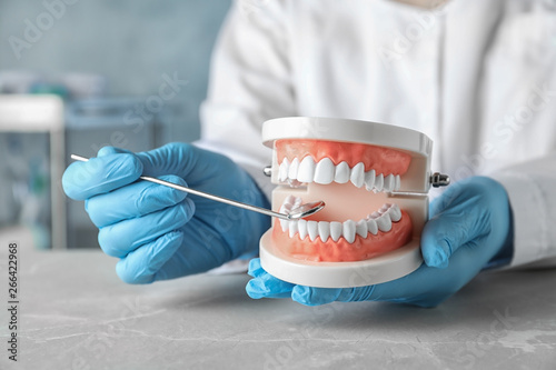 Fotografija Dentist holding educational model of oral cavity at table in clinic, closeup
