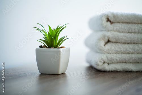 Poster Vegetal Spa. White Cotton Towels Use In Spa Bathroom. Towel Concept. Photo For Hotels and Massage Parlors. Purity and Softness. Towel Textile