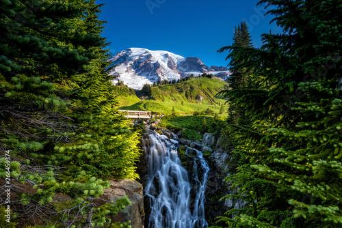 Fotografie, Obraz Beautiful wildflowers and Mount Rainier, Washington state