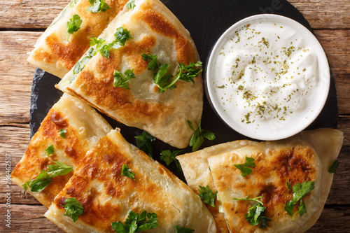 Photo Bolani is a traditional Afghani flatbread stuffed and baked with either potato, onion, cilantro filling closeup