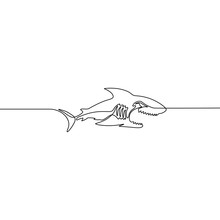 Continuous One Line Vector Shark Isolated On White Background.