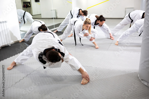 Stretching in martial art of taekwondo combat sport