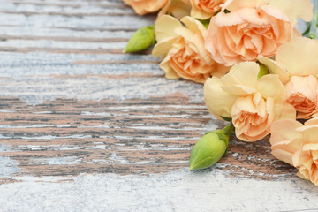 flower carnation lying on wood