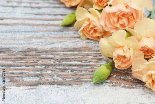 Fototapety, obrazy: flower carnation lying on wood