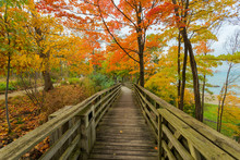 Fall Bridge In The Midwest