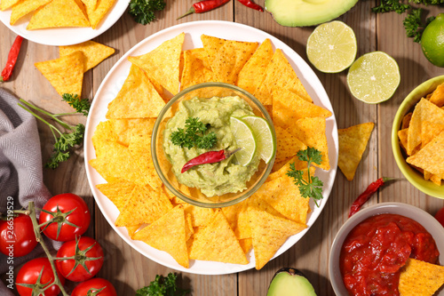 Poster de jardin Inde tortilla chip with guacamole and salsa sauce