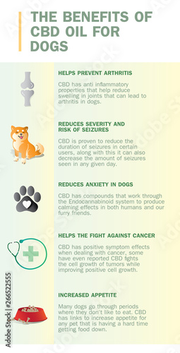 the benefits of cbd oil for dogs - Buy this stock vector and