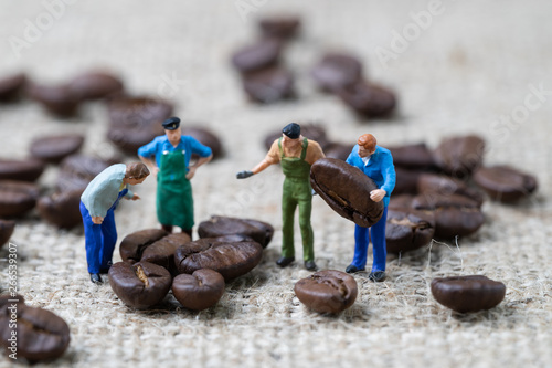Door stickers Cafe Coffee beans business expert or professional concept, miniature people figurine worker selecting roasted coffee beans on gunny bag background, selecting best quality