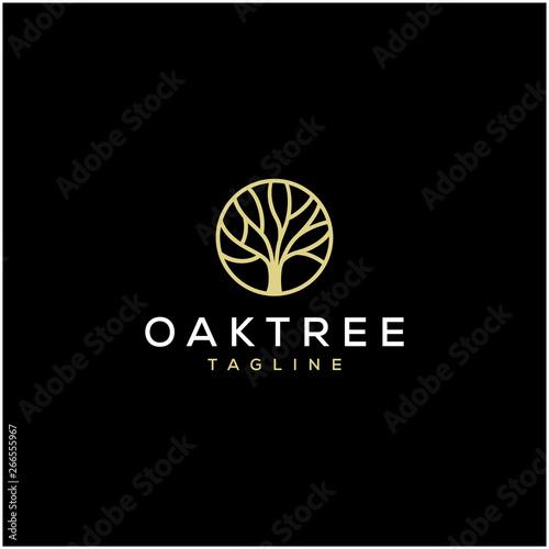 Carta da parati simple oak tree vector logo design