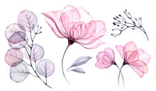 Transparent Watercolor Floral ...