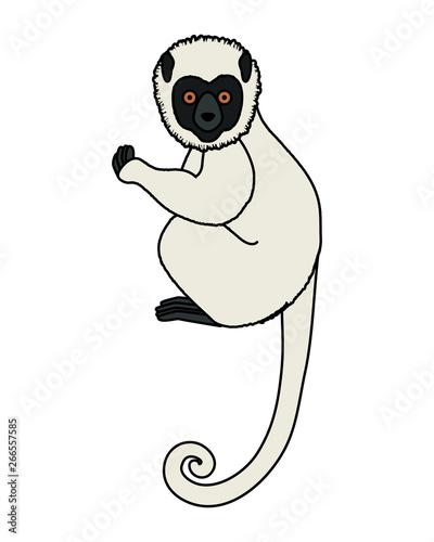 tropical capuchin monkey character Wallpaper Mural