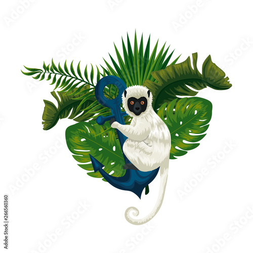 tropical capuchin monkey with anchor and leafs palms Wallpaper Mural
