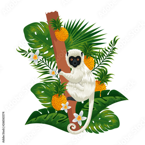 tropical capuchin monkey in pineapple plant and leafs Wallpaper Mural