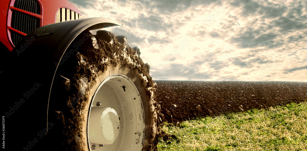 Fototapety, obrazy: Tractor cultivating field. Agriculture and machinery.