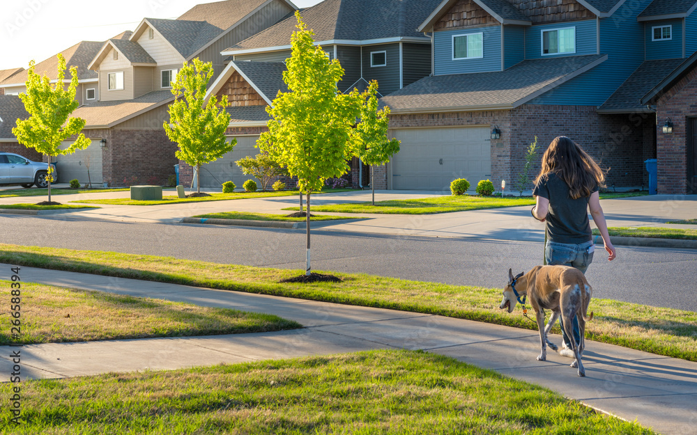 Fototapety, obrazy: Young woman walking dog in modern residential houses neighborhood street in Bentonville, Northwest Arkansas, sunny flare day, fast growing city  lifestyle