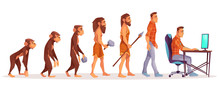 Human Evolution Of Monkey To Modern Man Programmer, Computer User Isolated On White Background. Male Character Evolve Steps From Ape To Upright Homo Sapiens, Darwin Theory. Cartoon Vector Illustration