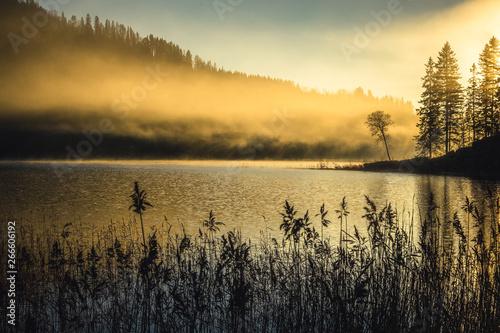 Foggy autumnal surise at Jonsvatnet, Norway