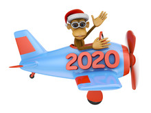 Monkey In Airplane 2020