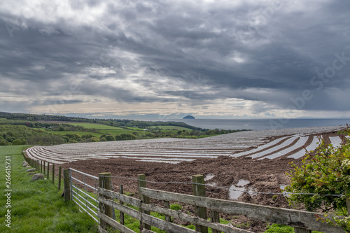 Ailsa Craig from a Farmers Field in South Ayrshire Scotland. Wallpaper Mural