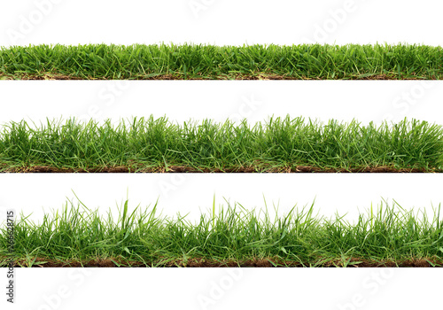 Foto auf Gartenposter Gras A collection of real grass borders, short, medium and long grass edges isolated on a white background.