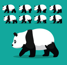 Animal Animation Sequence American Panda Bear Walking Cartoon Vector