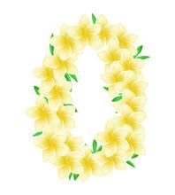 Floral Hawaiian Wreath, Neckla...
