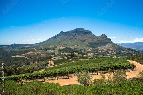 mata magnetyczna Beautiful landscape of Cape Winelands, wine growing region in South Africa