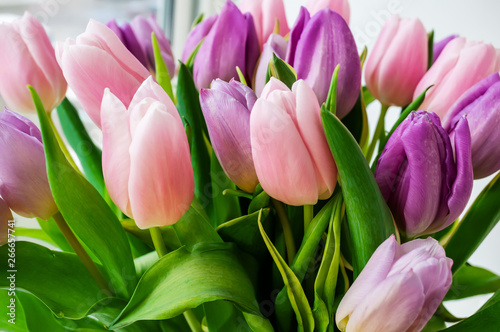 Poster Tulp A beautiful bouquet of colorful spring tulips stands on the window. Close-up