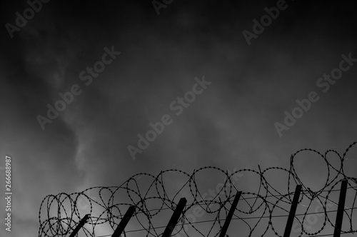Barbed wire fence Wallpaper Mural