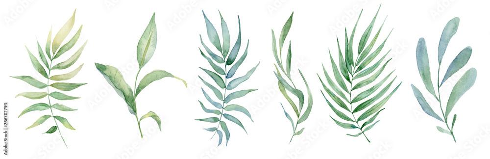 Fotografía watercolor green leaves set