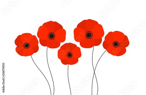 Fotografie, Obraz Red poppies flowers isolated on white background.