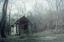 Old Wooden Hut Ruins In Foggy Wood, Spooky Landscape