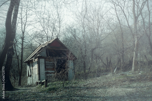 Old wooden hut ruins in foggy wood, spooky landscape Poster Mural XXL