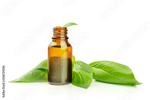 Cuadros en Lienzo Basil essential oil