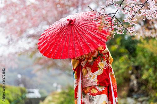 Cuadros en Lienzo Kyoto, Japan Cherry blossom sakura trees in spring with blooming flowers in gard