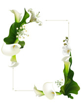 Flowers. Floral Background. Callas. White Orchids. Green Leaves. Lilies. Border.
