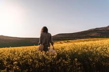 Unrecognizable Woman Walking Among Flowers