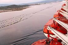 Botes Salvavidas En Barco De Crucero.