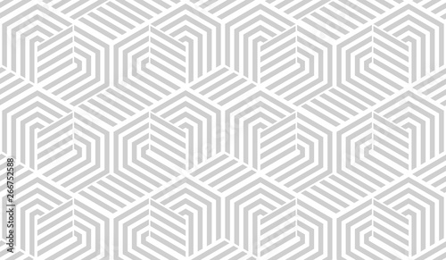 Foto auf Gartenposter Künstlich Abstract geometric pattern with stripes, lines. Seamless vector background. White and grey ornament. Simple lattice graphic design.