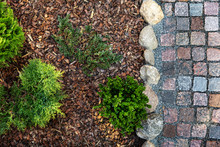Landscaped Garden - Mulched Flower Bed And Granite Cobblestone Path. Top View