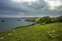 Berry Head Nature Reserve