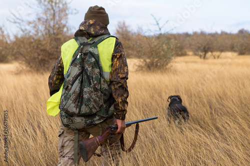 Carta da parati Hunters with a german drathaar and spaniel, pigeon hunting with dogs in reflecti